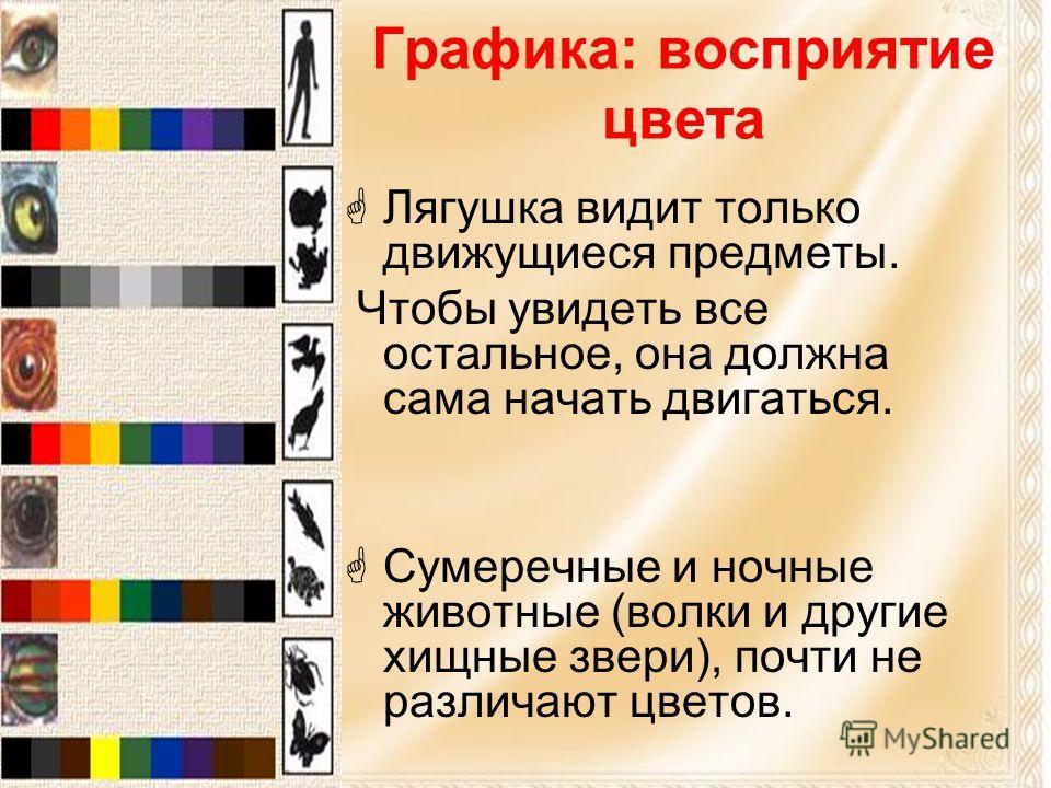 Графика: восприятие цвета Лягушка видит только движущиеся предметы. Чтобы увидеть все остальное, она должна сама начать двигаться. Сумеречные и ночные животные (волки и другие хищные звери), почти не различают цветов.