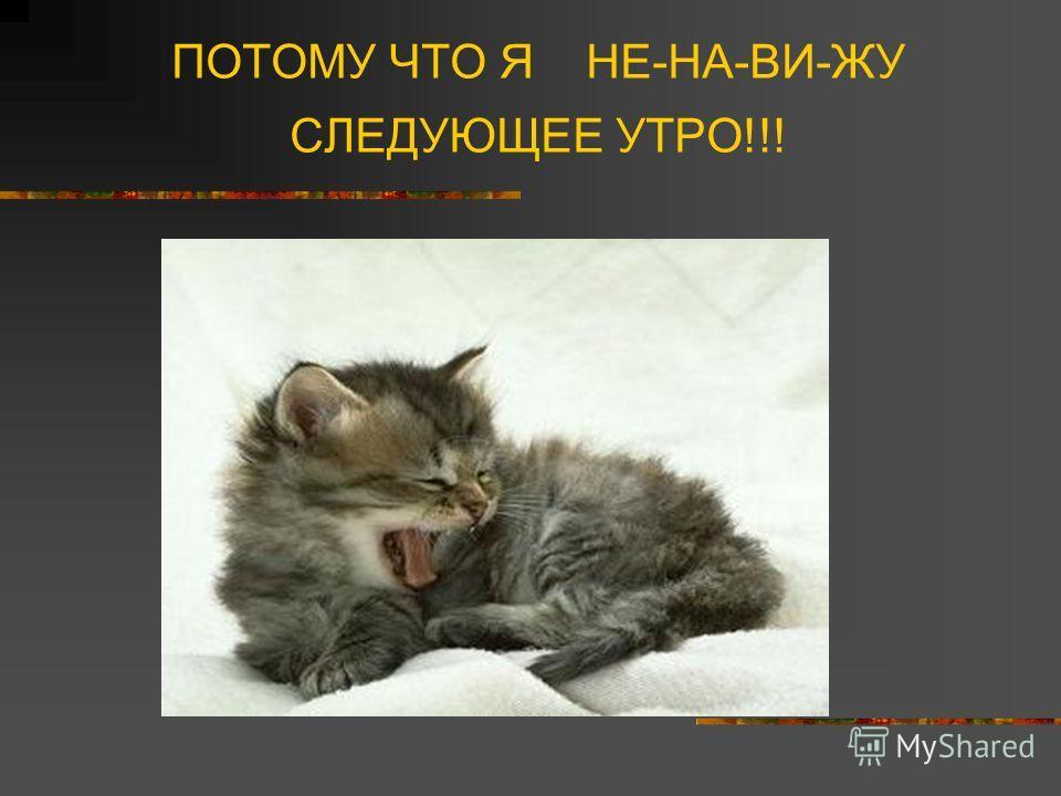 ПОТОМУ ЧТО Я НЕ-НА-ВИ-ЖУ СЛЕДУЮЩЕЕ УТРО!!!