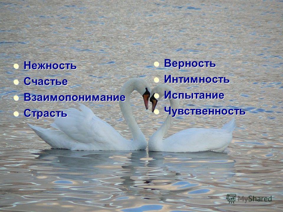 Нежность Нежность Счастье Счастье Взаимопонимание Взаимопонимание Страсть Страсть Верность Верность Интимность Интимность Испытание Испытание Чувственность Чувственность