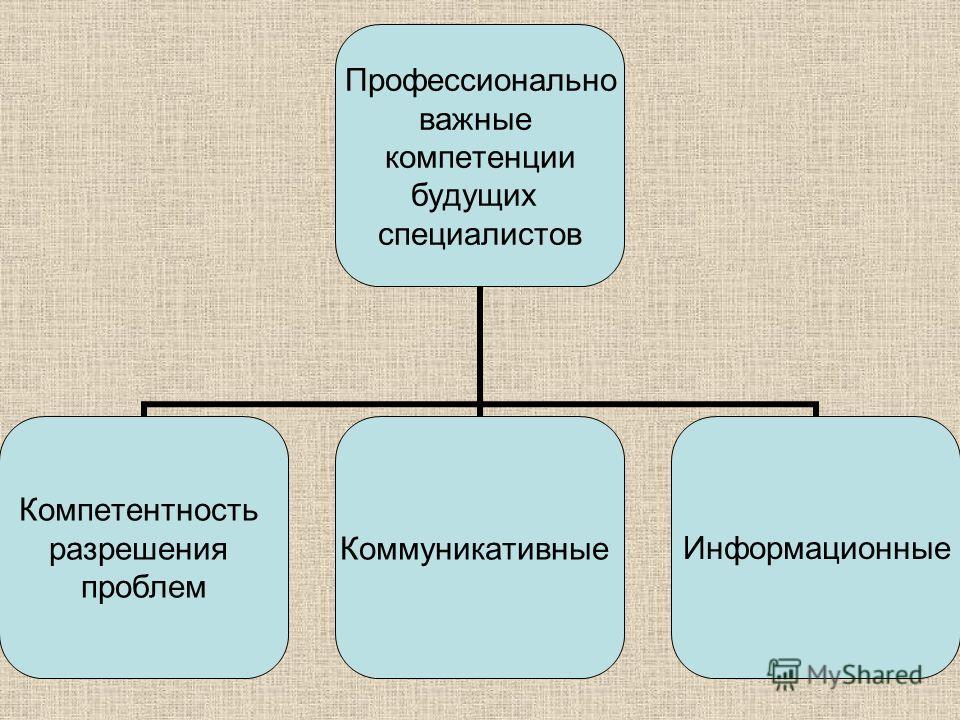 Профессионально важные компетенции будущих специалистов Компетентность разрешения проблем КоммуникативныеИнформационные