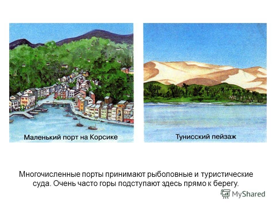 Многочисленные порты принимают рыболовные и туристические суда. Очень часто горы подступают здесь прямо к берегу.