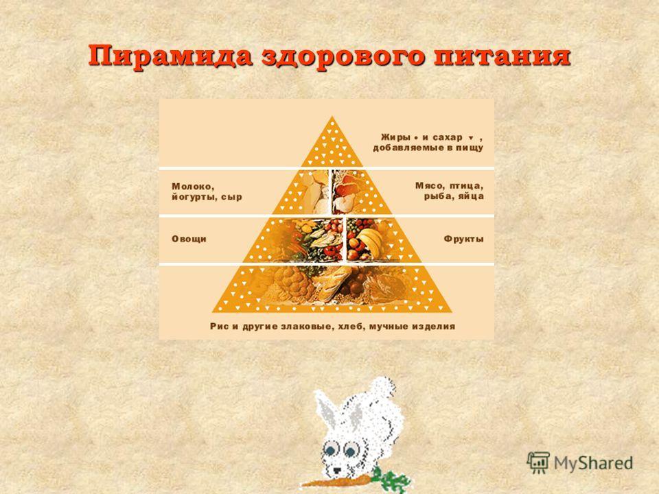 Свежие и разнообразные – одно из непременных условий сохранения нашего здоровья. Согласно пирамиде здорового питания, основу питания должны составлять крупы, рис, хлебобулочные изделия. Овощи и фрукты – источники витаминов и минералов. Мясо – это осн