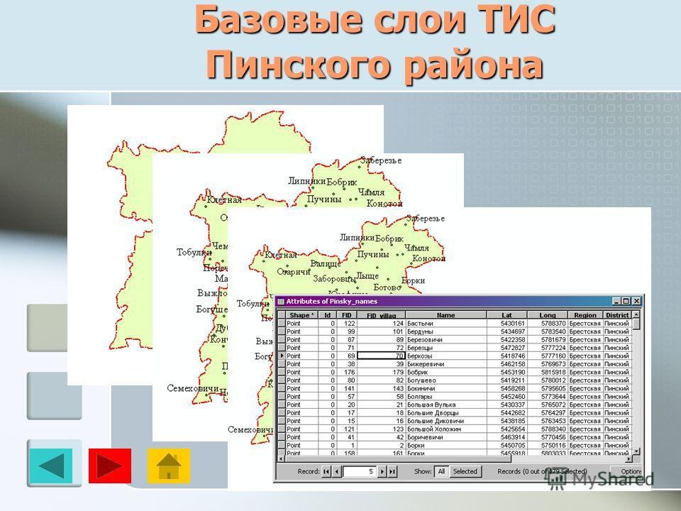 Базовые слои ТИС Пинского района