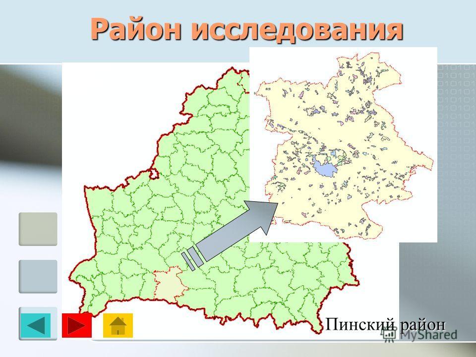 Район исследования Пинский район