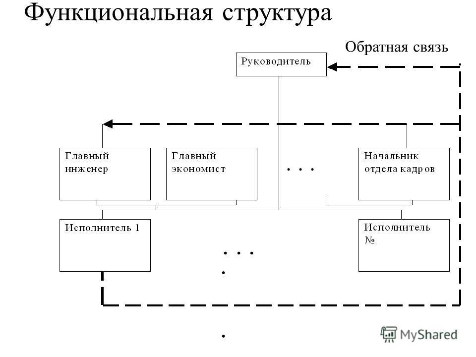 Обратная связь......... Функциональная структура