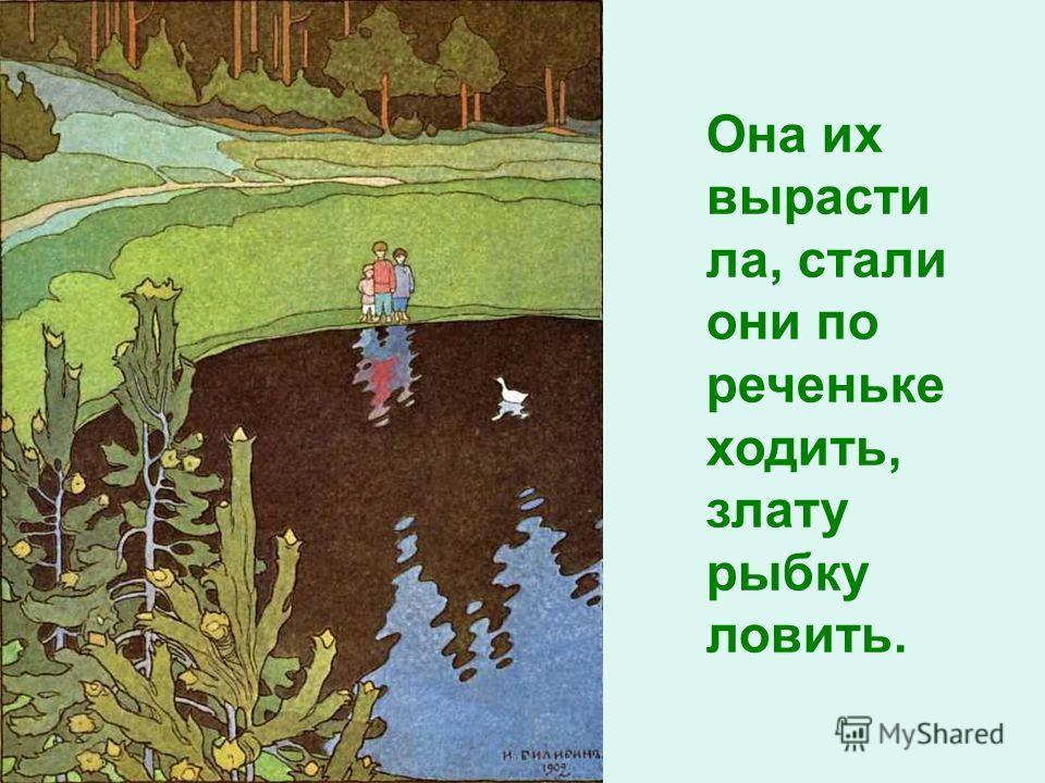 Она их вырасти ла, стали они по реченьке ходить, злату рыбку ловить.