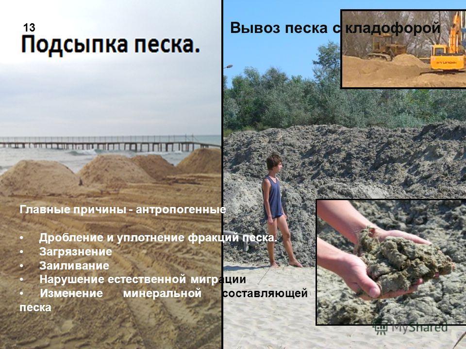 47 Главные причины - антропогенные Дробление и уплотнение фракций песка. Загрязнение Заиливание Нарушение естественной миграции Изменение минеральной составляющей песка Вывоз песка с кладофорой 13