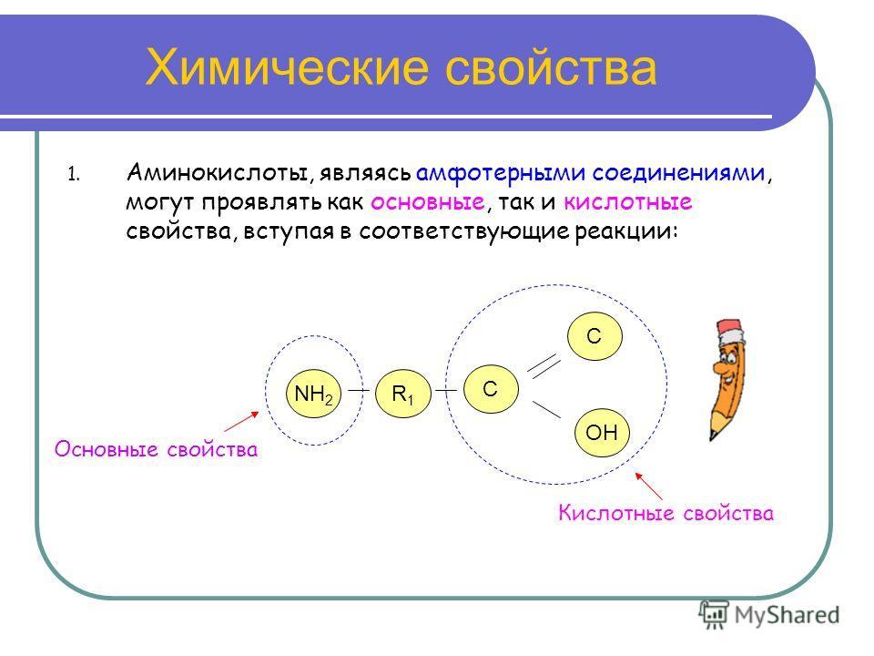 Химические свойства 1. Аминокислоты, являясь амфотерными соединениями, могут проявлять как основные, так и кислотные свойства, вступая в соответствующие реакции: NH 2 R1R1 C OH Основные свойства Кислотные свойства C