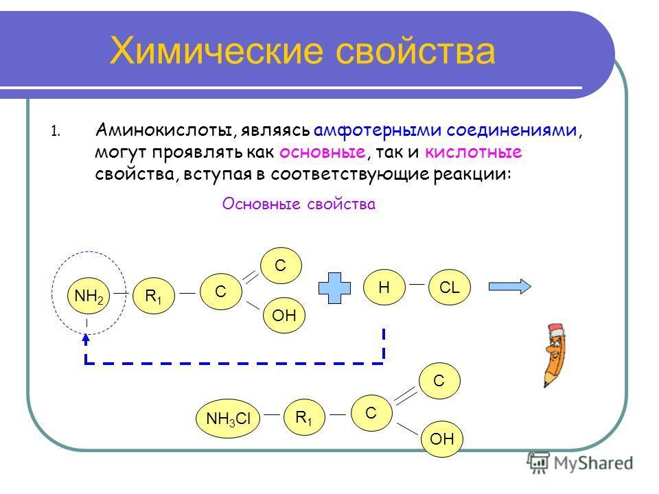 Химические свойства 1. Аминокислоты, являясь амфотерными соединениями, могут проявлять как основные, так и кислотные свойства, вступая в соответствующие реакции: NH 2 R1R1 C OH C Основные свойства NH 3 Cl R1R1 C OH C HCL