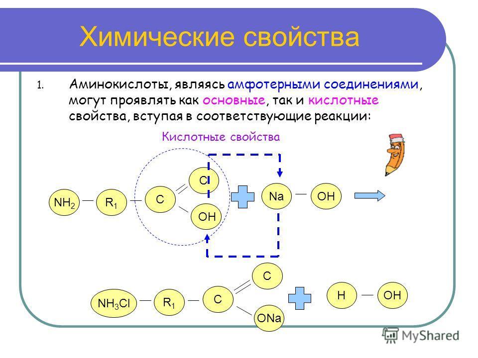Химические свойства 1. Аминокислоты, являясь амфотерными соединениями, могут проявлять как основные, так и кислотные свойства, вступая в соответствующие реакции: NH 2 R1R1 C O C NH 3 Cl R1R1 C ONa C NaOH Кислотные свойства H OH H