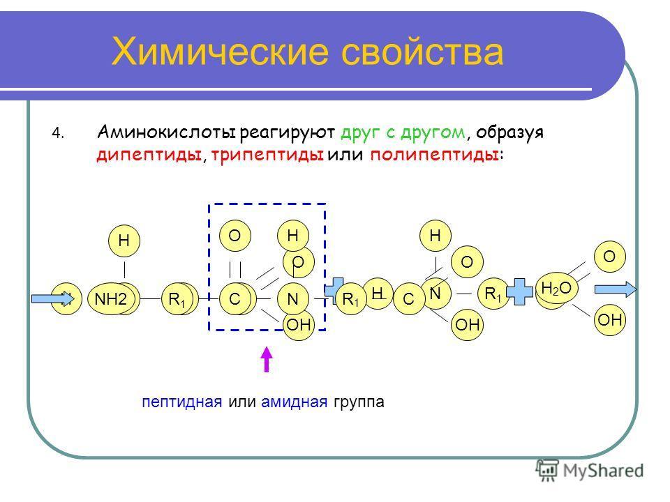 Химические свойства 4. Аминокислоты реагируют друг с другом, образуя дипептиды, трипептиды или полипептиды: N R1R1 C OH O H H N R1R1 C O H H NH2 R1R1 C R1R1 O N H C OH O H2OH2O пептидная или амидная группа