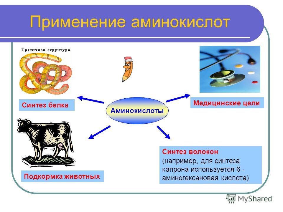 Применение аминокислот Аминокислоты Синтез белка Медицинские цели Подкормка животных Синтез волокон (например, для синтеза капрона используется 6 - аминогексановая кислота)