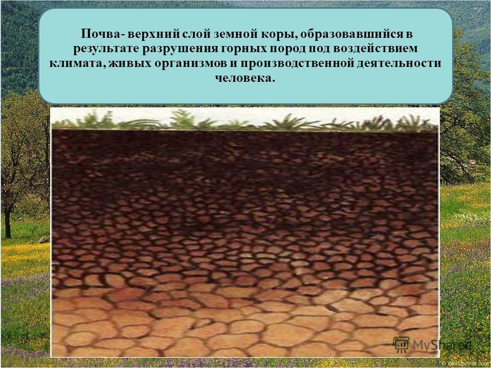 Почва- верхний слой земной коры, образовавшийся в результате разрушения горных пород под воздействием климата, живых организмов и производственной деятельности человека.