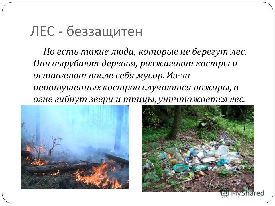 ЛЕС - беззащитен Но есть такие люди, которые не берегут лес. Они вырубают деревья, разжигают костры и оставляют после себя мусор. Из - за непотушенных костров случаются пожары, в огне гибнут звери и птицы, уничтожается лес.