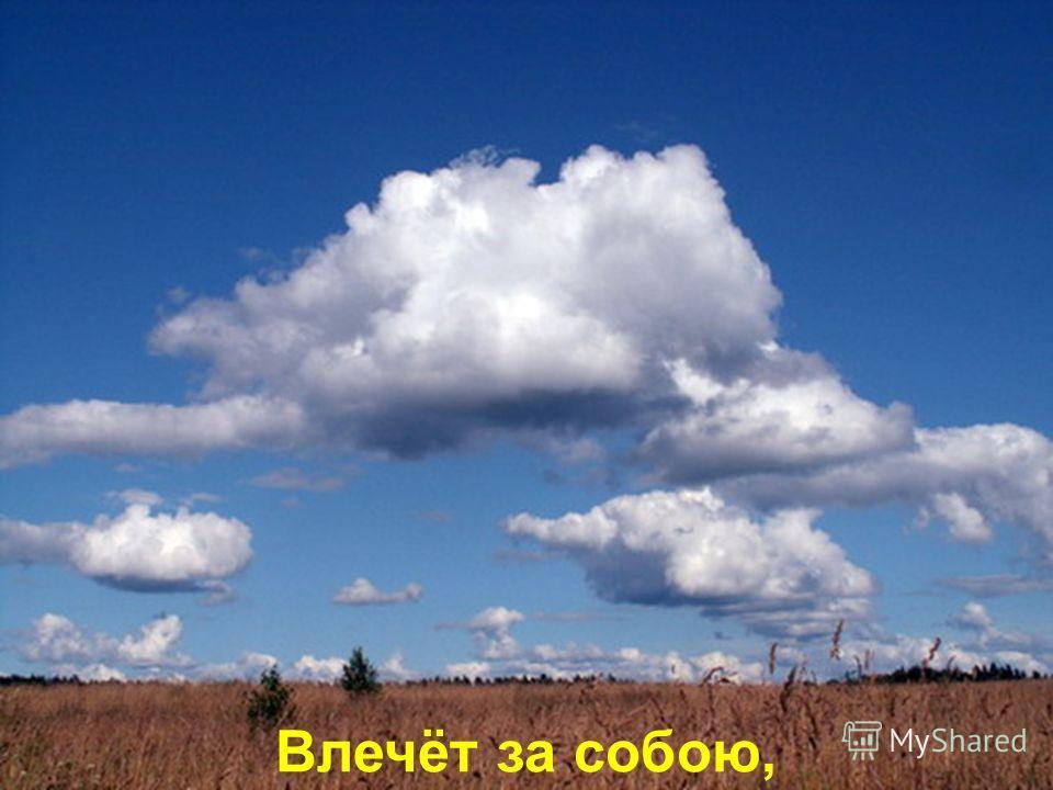 И мелодия ветра