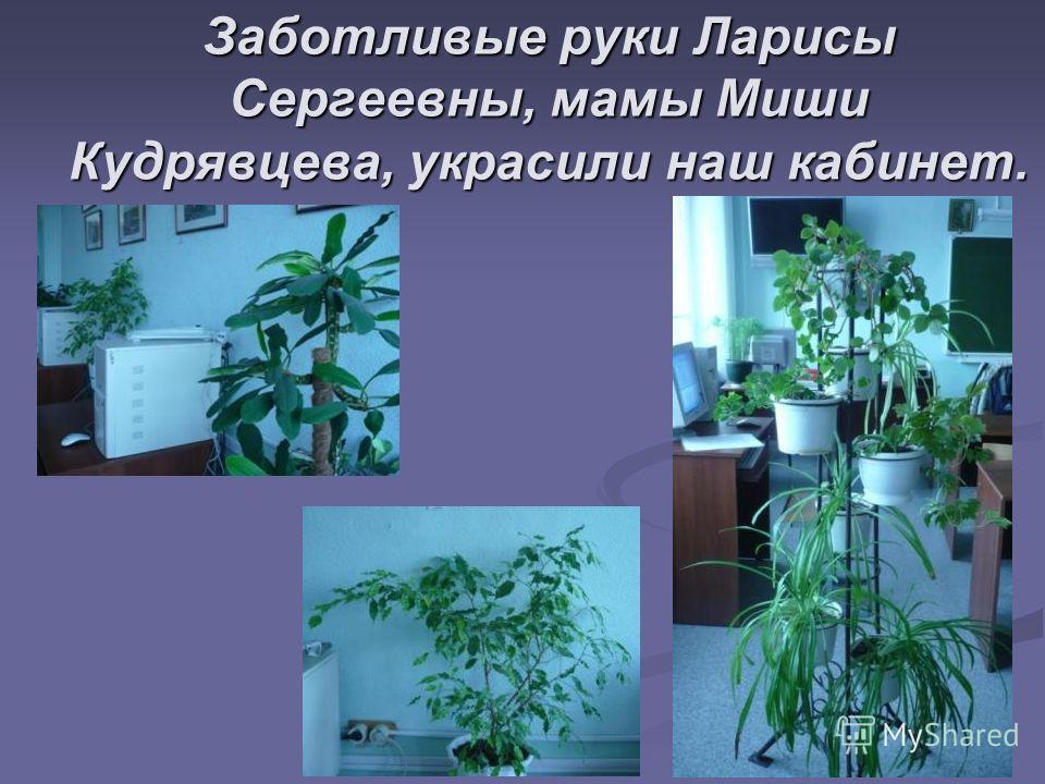 Заботливые руки Ларисы Сергеевны, мамы Миши Кудрявцева, украсили наш кабинет.
