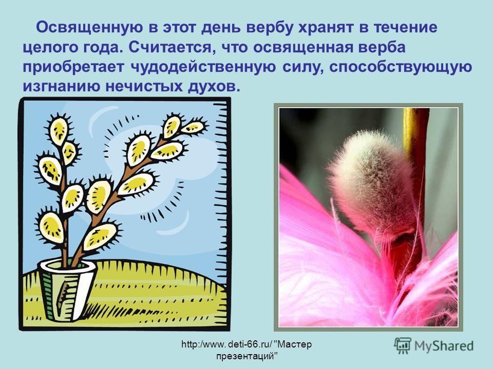 http:/www. deti-66.ru/ Мастер презентаций Освященную в этот день вербу хранят в течение целого года. Считается, что освященная верба приобретает чудодейственную силу, способствующую изгнанию нечистых духов.