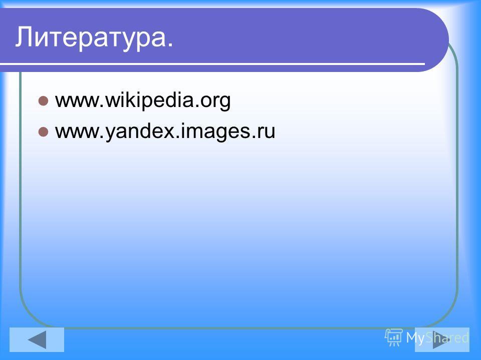 Литература. www.wikipedia.org www.yandex.images.ru