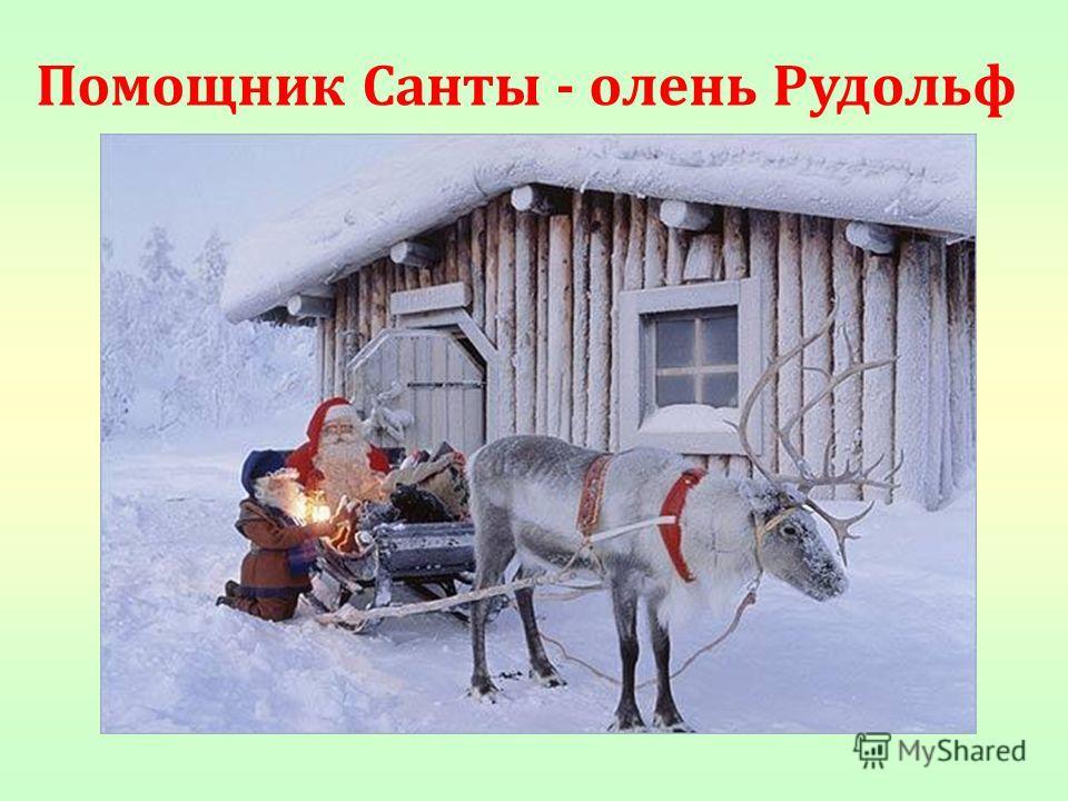 Помощник Санты - олень Рудольф