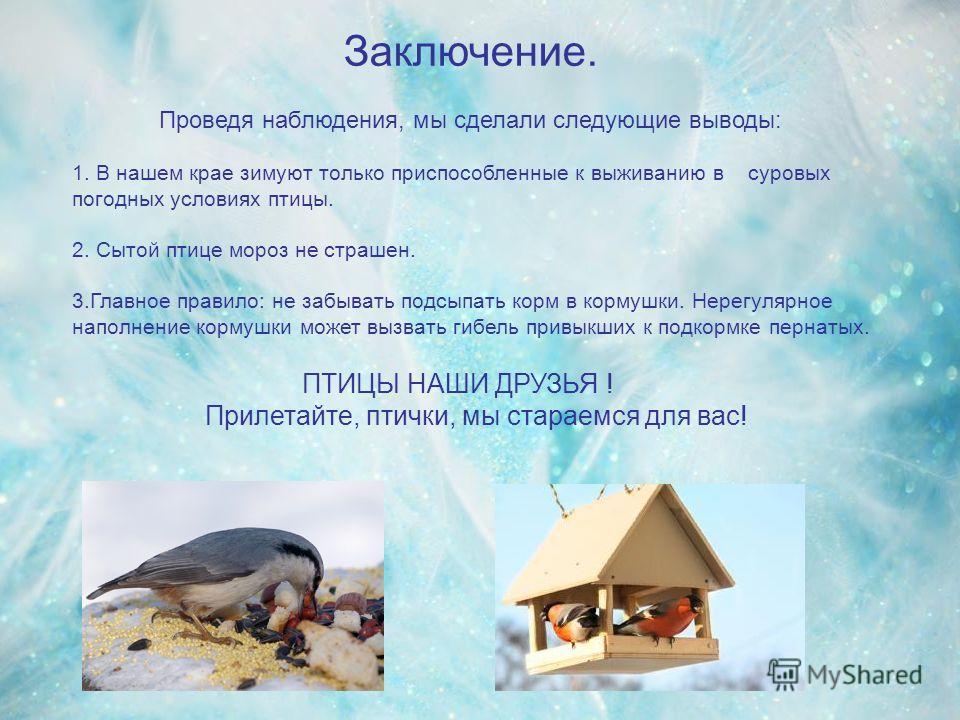 Заключение. Проведя наблюдения, мы сделали следующие выводы: 1. В нашем крае зимуют только приспособленные к выживанию в суровых погодных условиях птицы. 2. Сытой птице мороз не страшен. 3.Главное правило: не забывать подсыпать корм в кормушки. Нерег