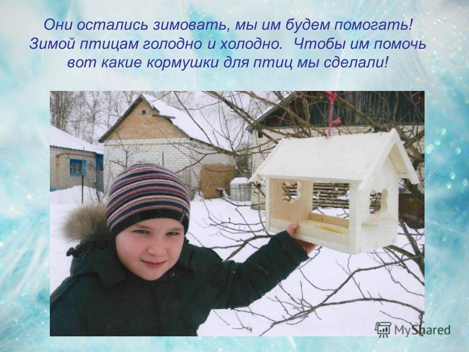 Они остались зимовать, мы им будем помогать! Зимой птицам голодно и холодно. Чтобы им помочь вот какие кормушки для птиц мы сделали!