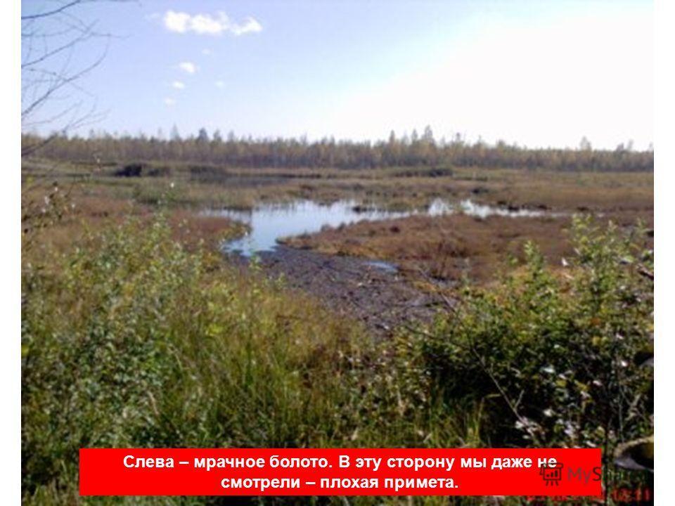 Слева – мрачное болото. В эту сторону мы даже не смотрели – плохая примета.
