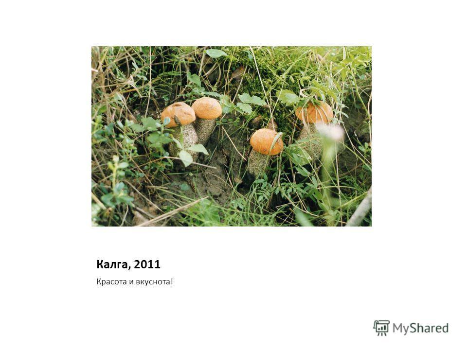 Калга, 2011 Красота и вкуснота!