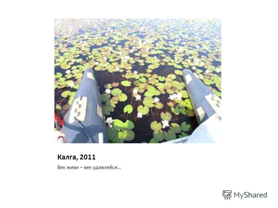 Калга, 2011 Век живи – век удивляйся…