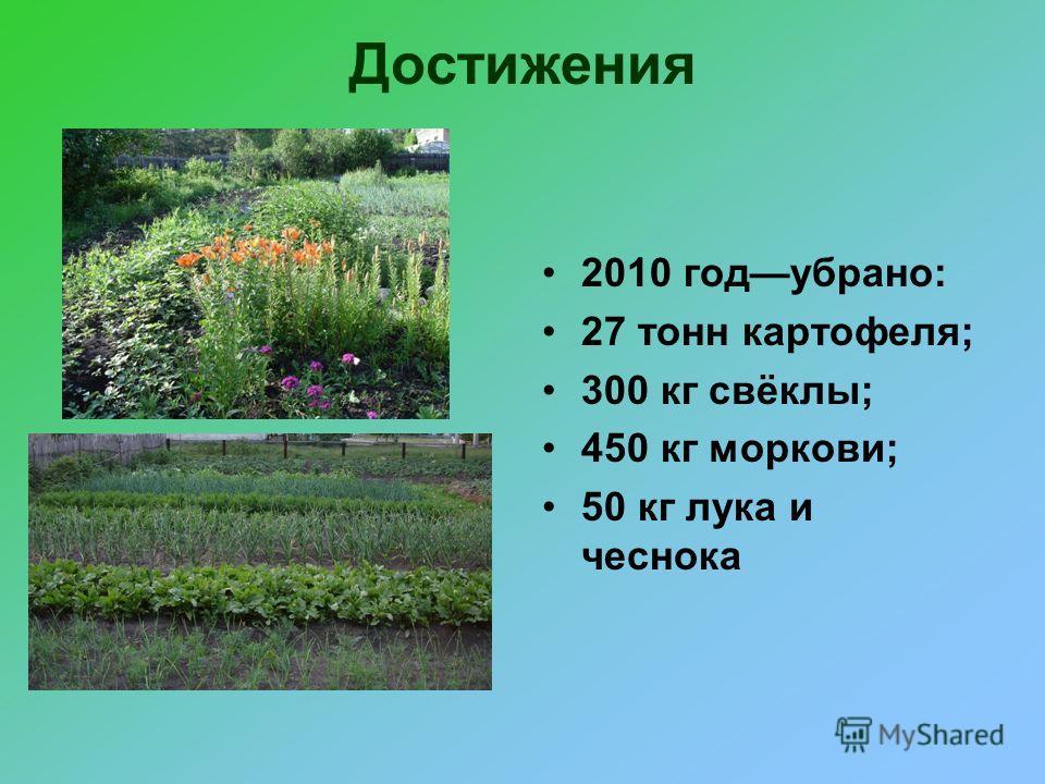 Достижения 2010 годубрано: 27 тонн картофеля; 300 кг свёклы; 450 кг моркови; 50 кг лука и чеснока