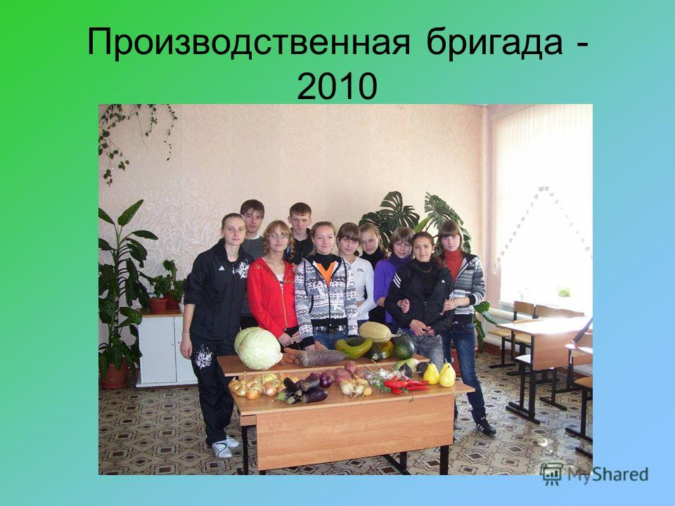 Производственная бригада - 2010