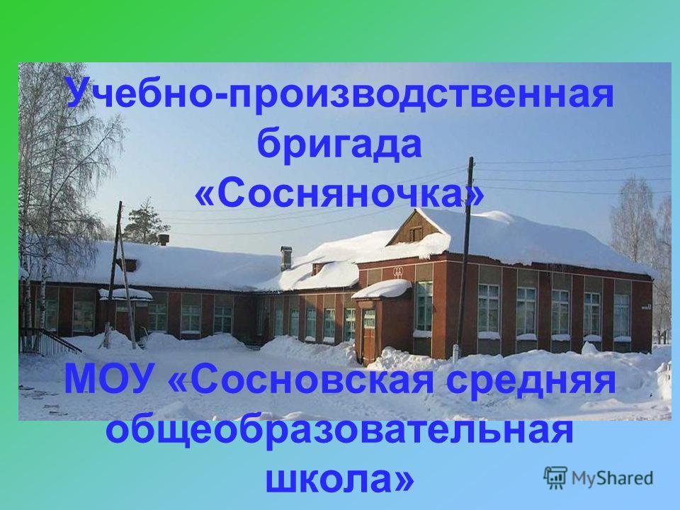 Учебно-производственная бригада «Сосняночка» МОУ «Сосновская средняя общеобразовательная школа»