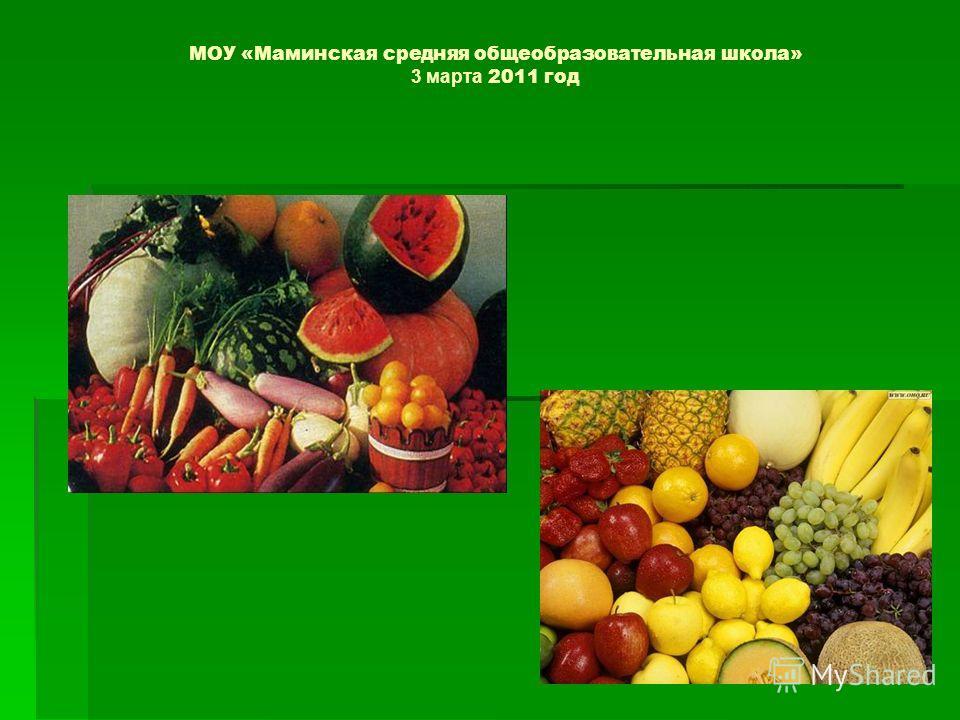 МОУ «Маминская средняя общеобразовательная школа» 3 марта 2011 год