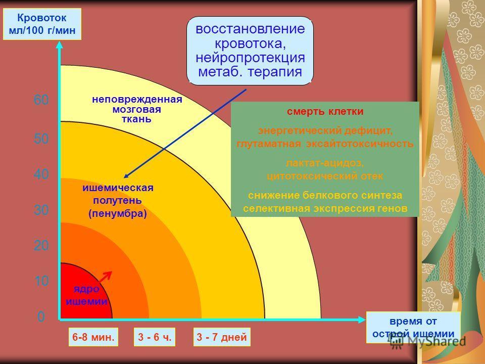 Кровоток мл/100 г/мин неповрежденная мозговая ткань ишемическая полутень (пенумбра) 6-8 мин.3 - 7 дней время от острой ишемии восстановление кровотока, нейропротекция метаб. терапия 3 - 6 ч. ядро ишемии смерть клетки энергетический дефицит, глутаматн