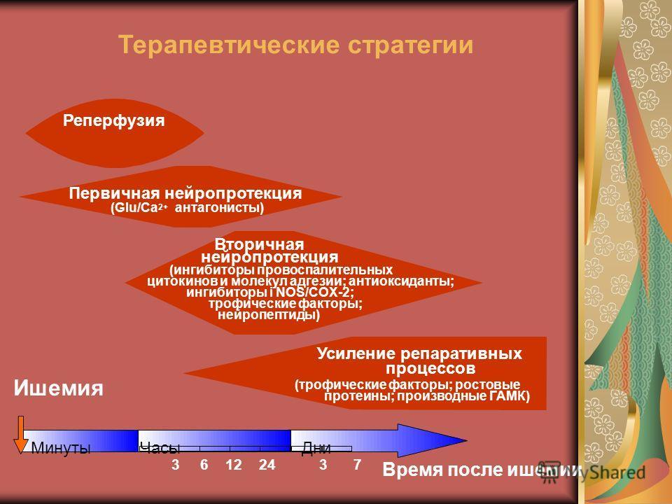 Вторичная нейропротекция (ингибиторы провоспалительных цитокинов и молекул адгезии; антиоксиданты; ингибиторы i NOS/COX-2; трофические факторы; нейропептиды) Терапевтические стратегии (Glu/Ca 2+ антагонисты) Первичная нейропротекция Реперфузия Усилен
