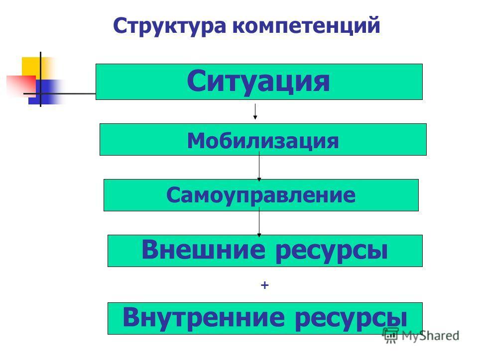 Ситуация Мобилизация Самоуправление Внешние ресурсы Внутренние ресурсы Структура компетенций +