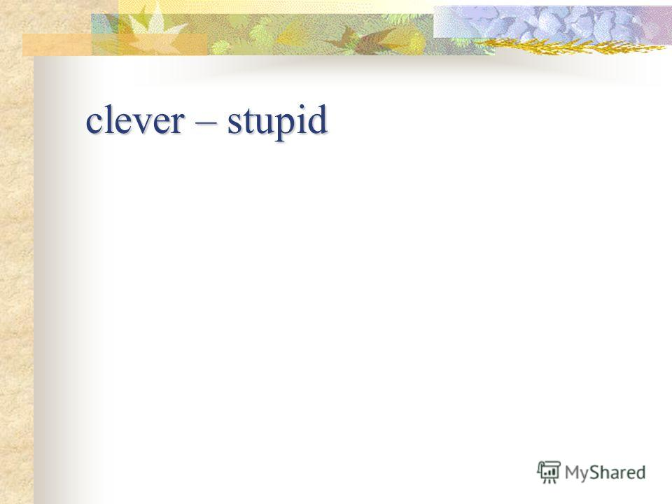 clever – stupid