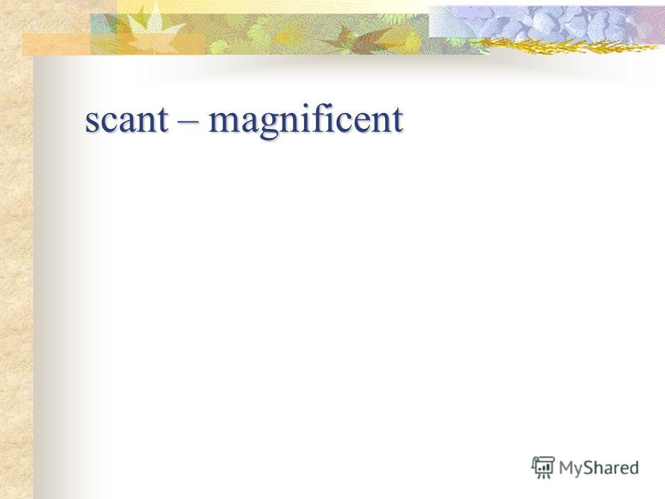 scant – magnificent