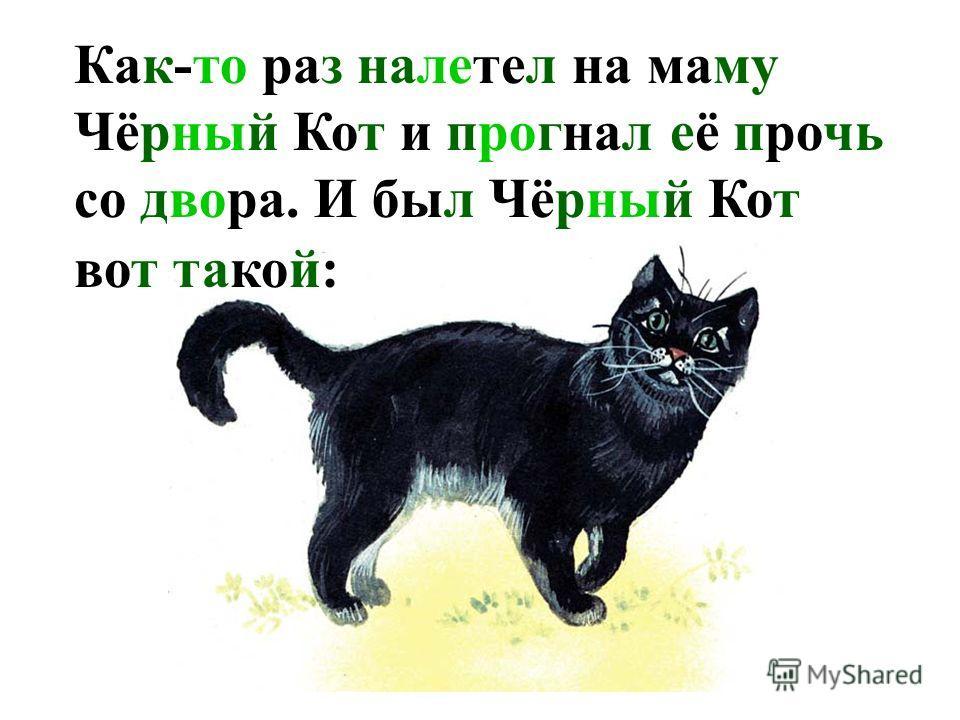 Как-то раз налетел на маму Чёрный Кот и прогнал её прочь со двора. И был Чёрный Кот вот такой: