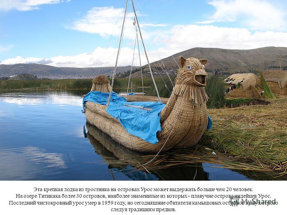 Эта крепкая лодка из тростника на островах Урос может выдержать больше чем 20 человек. На озере Титикака более 30 островов, наиболее знаменитые из которых - плавучие острова индейцев Урос. Последний чистокровный урос умер в 1959 году, но сегодняшние