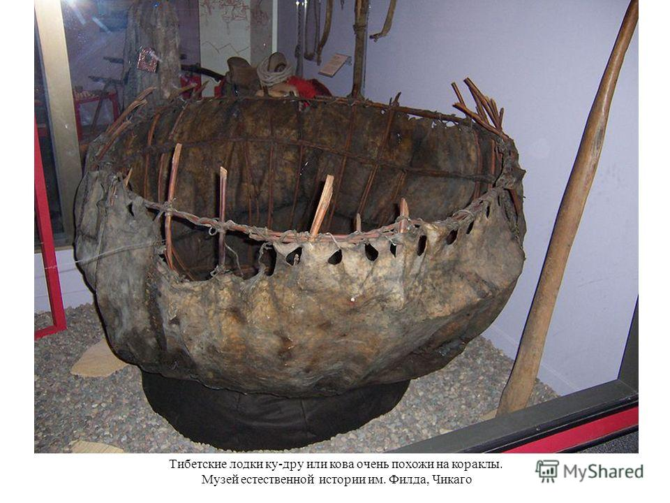 Тибетские лодки ку-дру или кова очень похожи на кораклы. Музей естественной истории им. Филда, Чикаго