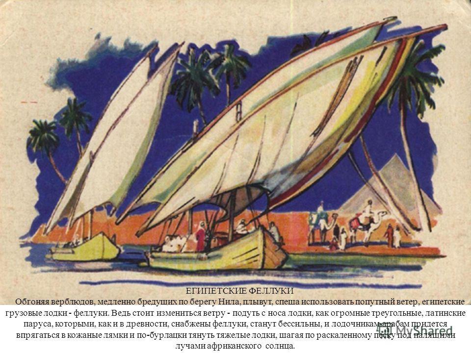 ЕГИПЕТСКИЕ ФЕЛЛУКИ Обгоняя верблюдов, медленно бредущих по берегу Нила, плывут, спеша использовать попутный ветер, египетские грузовые лодки - феллуки. Ведь стоит измениться ветру - подуть с носа лодки, как огромные треугольные, латинские паруса, кот