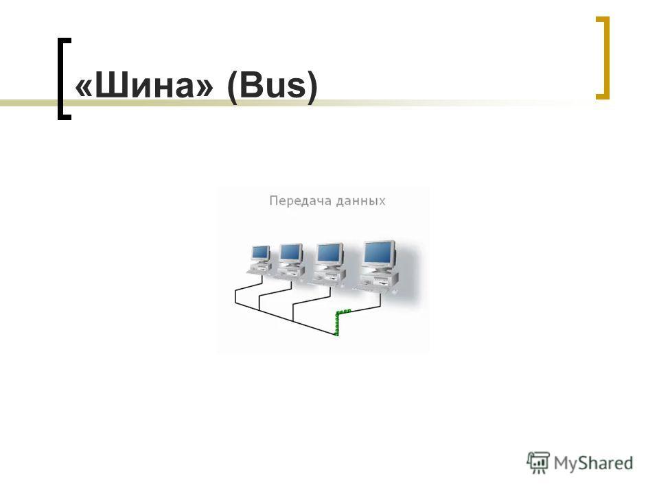«Шина» (Bus)