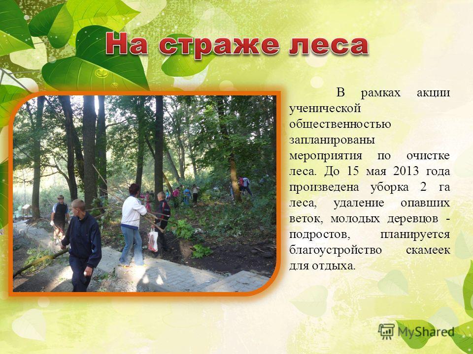 В рамках акции ученической общественностью запланированы мероприятия по очистке леса. До 15 мая 2013 года произведена уборка 2 га леса, удаление опавших веток, молодых деревцов - подростов, планируется благоустройство скамеек для отдыха.