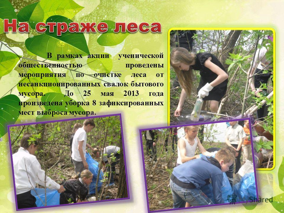 В рамках акции ученической общественностью проведены мероприятия по очистке леса от несанкционированных свалок бытового мусора. До 25 мая 2013 года произведена уборка 8 зафиксированных мест выброса мусора.