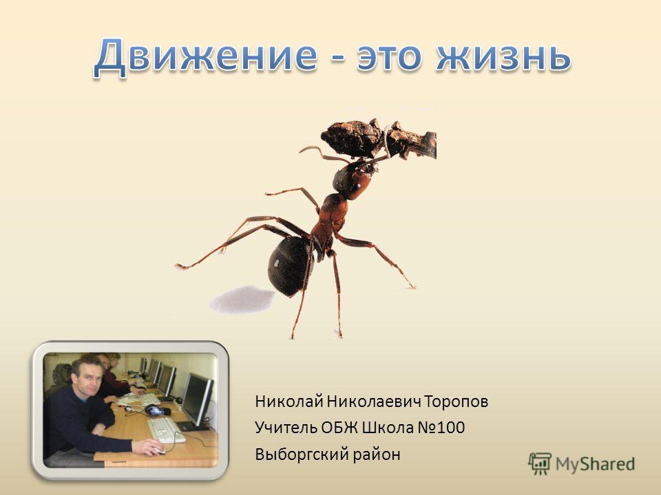 Николай Николаевич Торопов Учитель ОБЖ Школа 100 Выборгский район