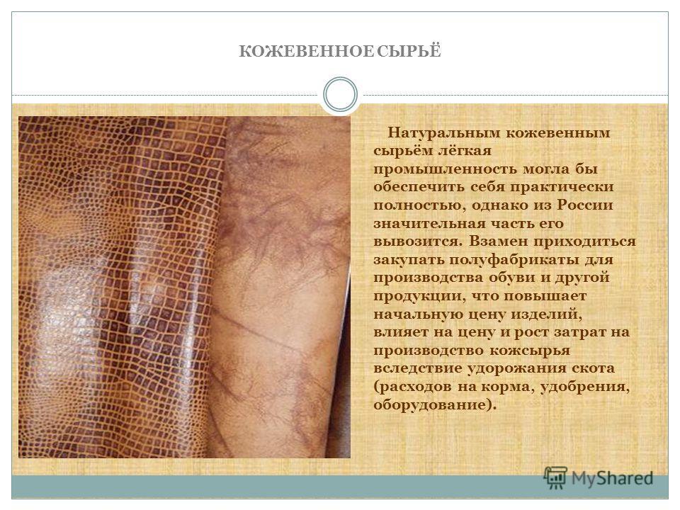 КОЖЕВЕННОЕ СЫРЬЁ Натуральным кожевенным сырьём лёгкая промышленность могла бы обеспечить себя практически полностью, однако из России значительная часть его вывозится. Взамен приходиться закупать полуфабрикаты для производства обуви и другой продукци