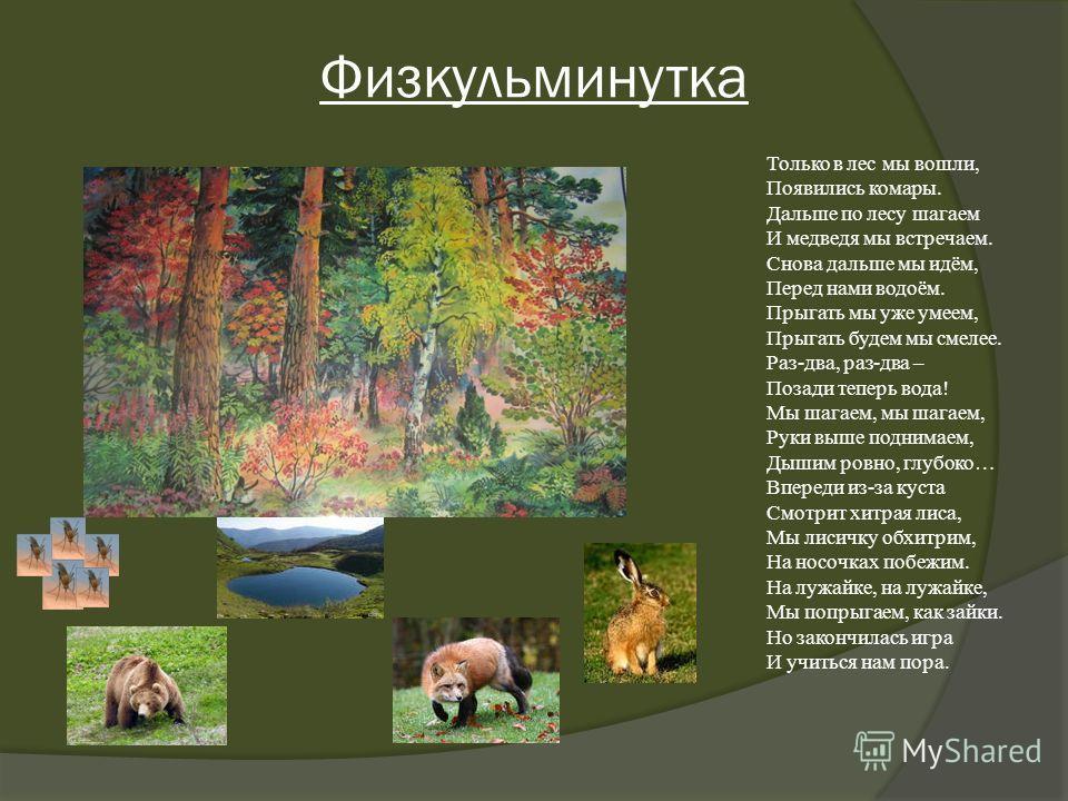 Физкульминутка Только в лес мы вошли, Появились комары. Дальше по лесу шагаем И медведя мы встречаем. Снова дальше мы идём, Перед нами водоём. Прыгать мы уже умеем, Прыгать будем мы смелее. Раз-два, раз-два – Позади теперь вода! Мы шагаем, мы шагаем,