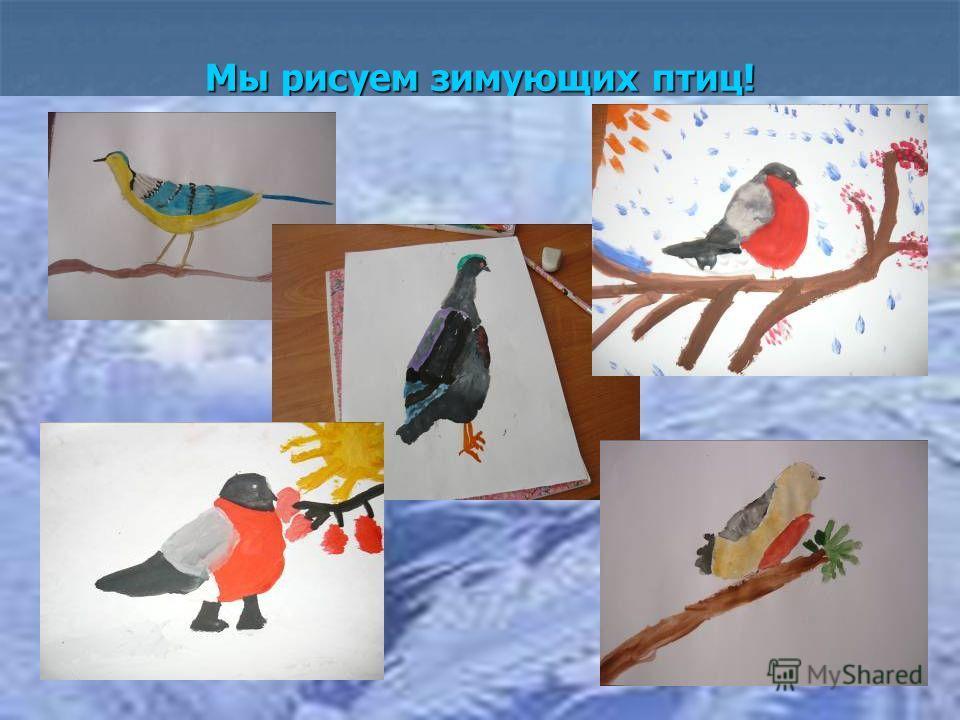 Мы рисуем зимующих птиц!