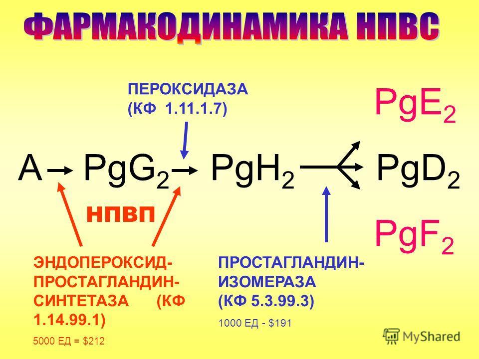 PgE 2 А PgG 2 PgH 2 PgD 2 PgF 2 ЭНДОПЕРОКСИД- ПРОСТАГЛАНДИН- СИНТЕТАЗА (КФ 1.14.99.1) 5000 ЕД = $212 ПРОСТАГЛАНДИН- ИЗОМЕРАЗА (КФ 5.3.99.3) 1000 ЕД - $191 ПЕРОКСИДАЗА (КФ 1.11.1.7) НПВП