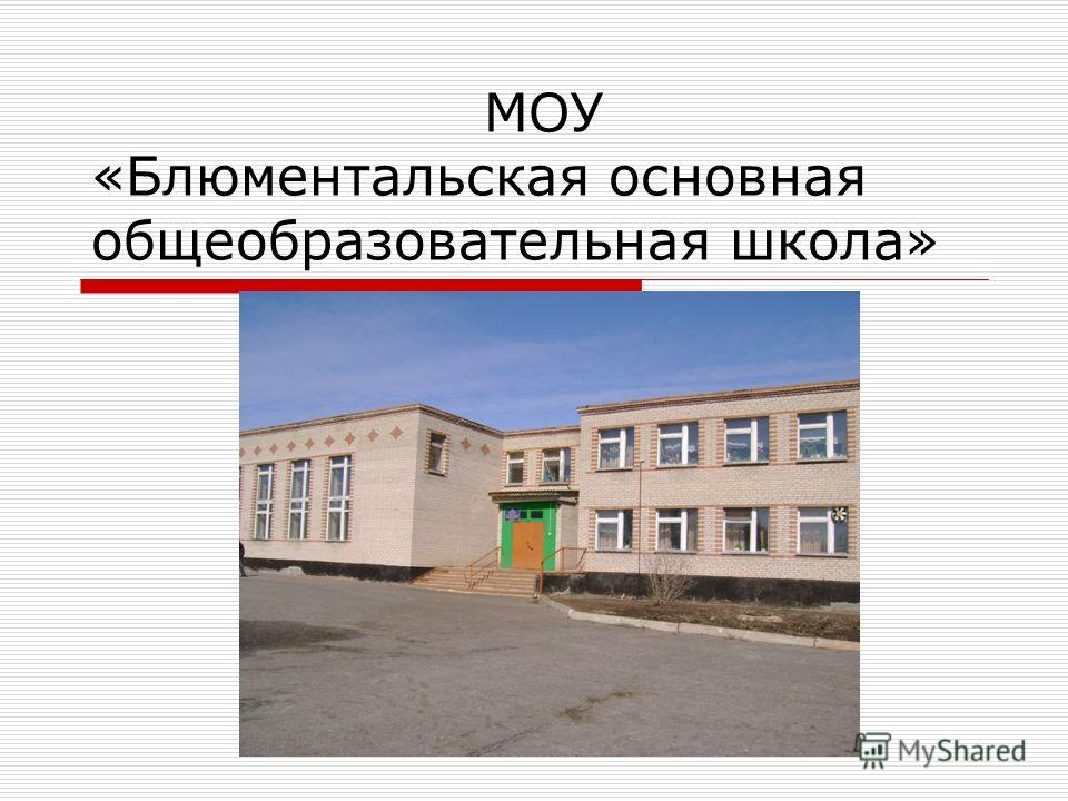 МОУ «Блюментальская основная общеобразовательная школа»
